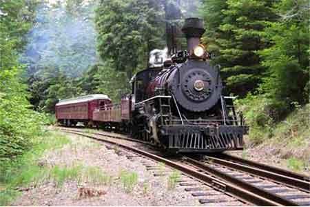 the skunk train willits ca