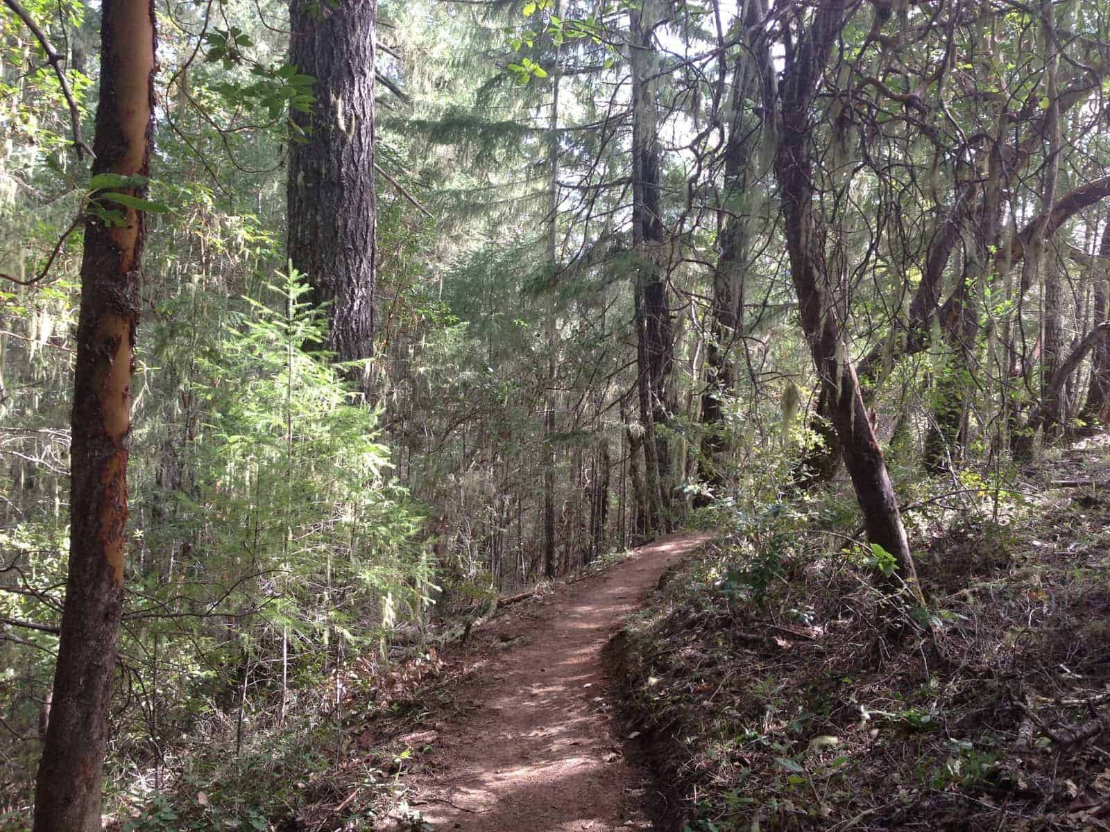 Little-Darby-Nature-Trail-Willits-Hiking-Trail
