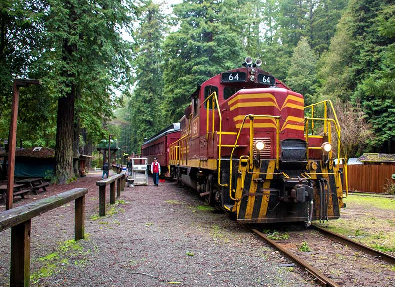 Things to do in willits ca - The Skunk Train